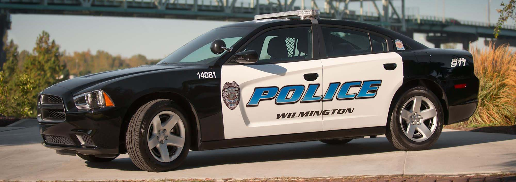 WPD earns Gold Standard Accreditation