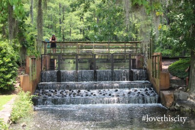 Greenfield Lake Spillway