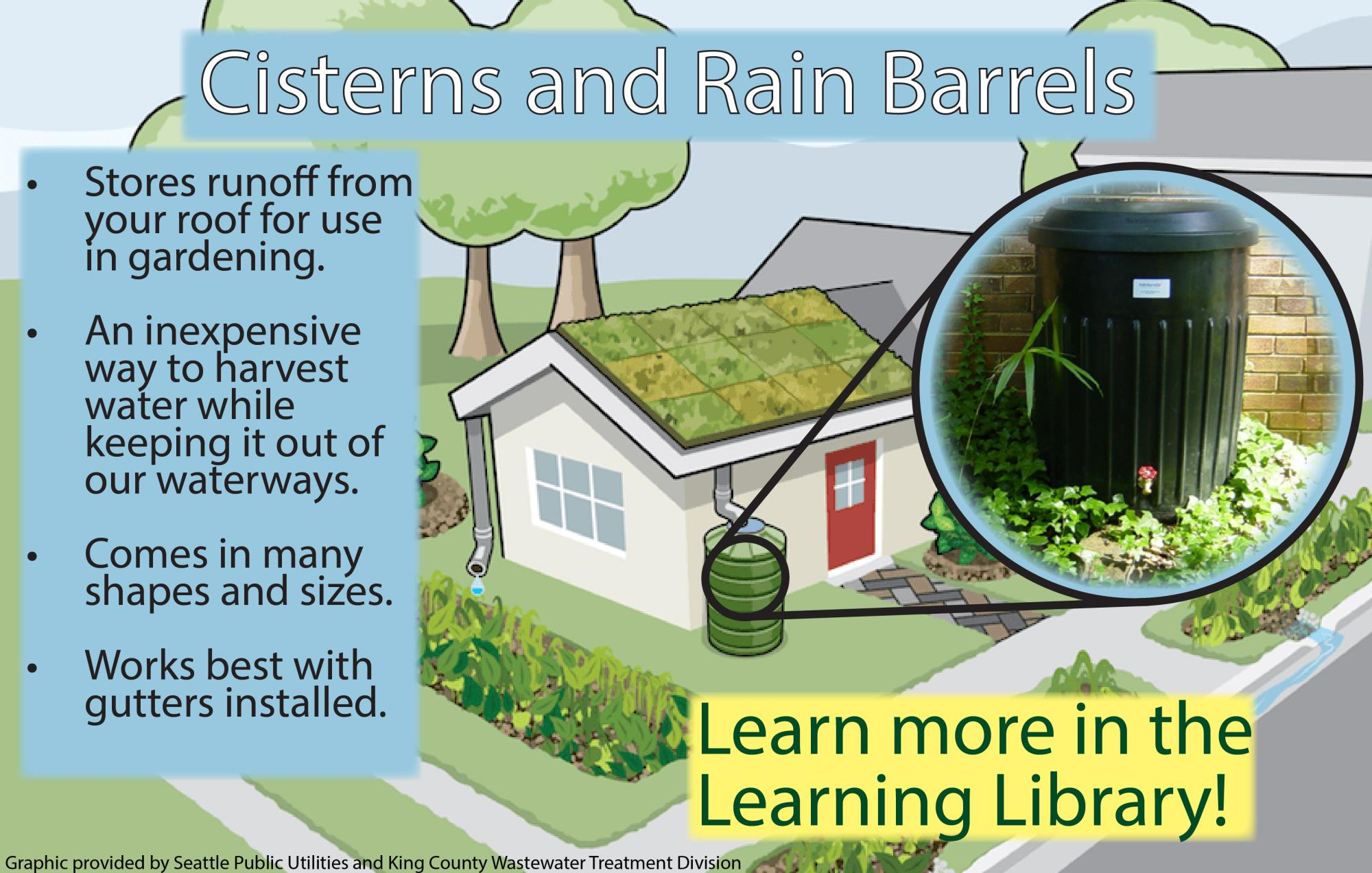 Cisterns and Rain Barrels Infographic