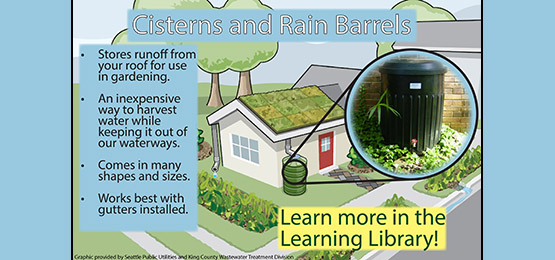 Is your rain barrel installed yet?