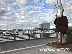 Marina After Renovation