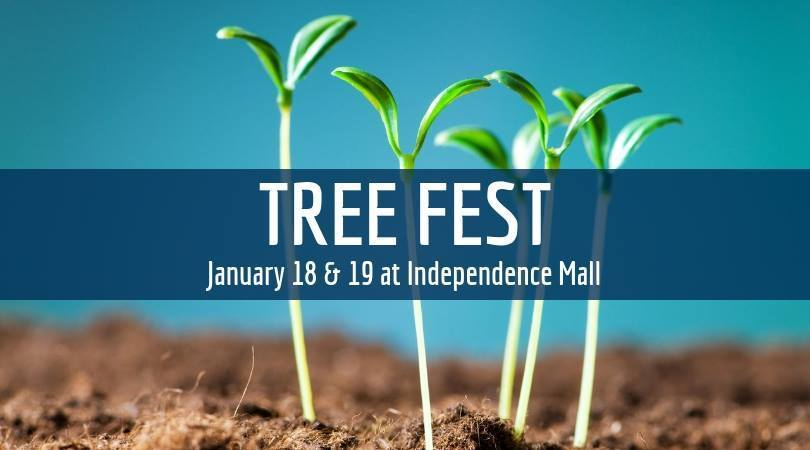 TreeFest 2019 is underway!