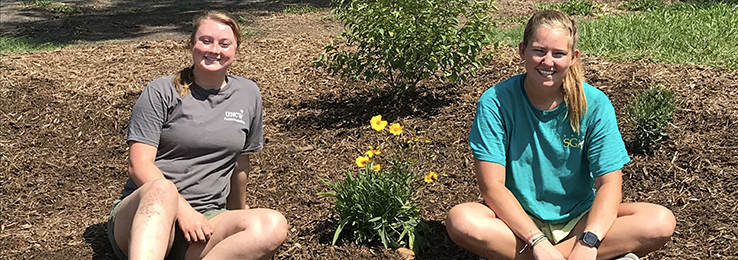 Rain Gardens Planted at UNCW