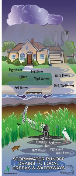Stormwater Pollution Diagram
